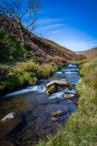 Hillside Stream Royalty Free Stock Image