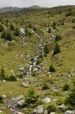 Hillside Suisse Image libre de droits