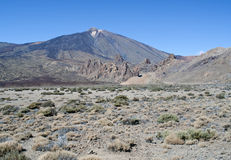 Hillside in the Teide national park Royalty Free Stock Photos