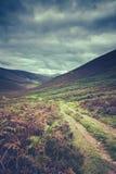 Hillside Trail In Scotland Stock Photography
