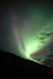 Hillside Trees Northern Lights Aurora Borealis Alaska Night Sky Royalty Free Stock Photos