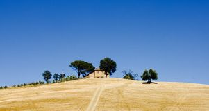 Hilltop farm Tuscany Italy. Farm at the top of a hill in Tuscany, Italy Royalty Free Stock Photos