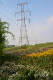 Hilltop pylon in blossoming summer Royalty Free Stock Image