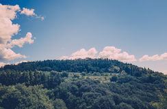 Hilltop Scenery. Beautiful green hilltop with clouds above. A calm summer's scene royalty free stock photography