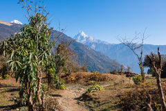 Hilltop of snow mountain view on the way to Annapurna base camp Royalty Free Stock Photo