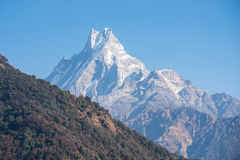 Hilltop of snow mountain view on the way to Annapurna base camp. Nepal royalty free stock photo