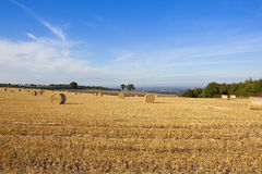 Hilltop straw bales Stock Images