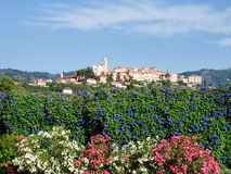 Hilltop village surrounded by olive groves and vineyards Royalty Free Stock Images