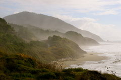 Hilly coastline Stock Images