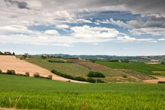 Hilly countryside of le Marche, Italy Stock Image