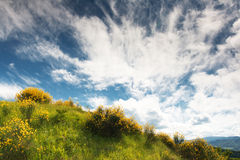 Hilly countryside of le Marche, Italy. In spring Royalty Free Stock Photo