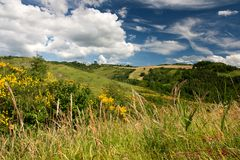 Hilly countryside of le Marche, Italy Royalty Free Stock Photos