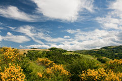 Free Hilly Countryside Of Le Marche, Italy Stock Photo - 17143680