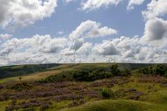 Hilly Exmoor landskap royaltyfria foton