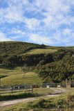 Hilly farming area. Green hills with forest and pasture under a blue sky with clouds Royalty Free Stock Images