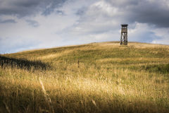 Hilly field with deerstand. Undulating landscape in Mecklenburg-Vorpommern with deerstand Royalty Free Stock Image