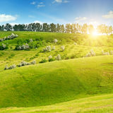 Hilly green fields and sun on blue sky. Hilly green fields and the sun on a blue sky Stock Photos