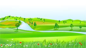 Hilly landscape. Green grass and blue sky Stock Photos