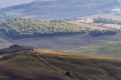 Hilly landscape Royalty Free Stock Photo