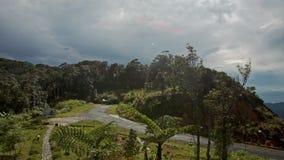 Hilly Landscape com Forest Valley Roads Building Roof filme