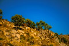 Hilly landscape covered by rocks and trees on sunset. Hilly landscape covered by rocks, undergrowth and trees, on sunset at the highlands of Serra da Estrela stock photo
