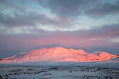 Hilly landscape in Iceland. A view of a hilly landscape in Iceland covered in snow at sunset Royalty Free Stock Photos
