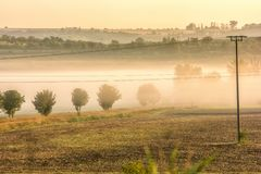 Hilly landscape with morning fog in the valleys stock image