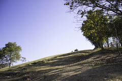 Hilly Landscape Nan, Tailandia Fotografia Stock