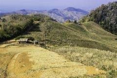 Hilly Landscape Nan Thailand Arkivfoto