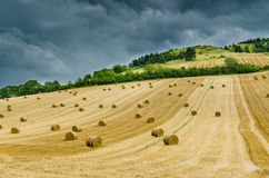 Hilly landscape before the storm Royalty Free Stock Photo