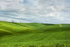 Hilly landscape of Tuscany Stock Photo