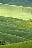 Hilly landscape of Tuscany. Rural countryside landscape in Tuscany region of Italy Royalty Free Stock Photo