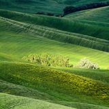 Hilly landscape of Tuscany. Rural countryside landscape in Tuscany region of Italy Stock Images