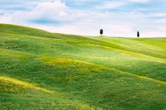 Hilly landscape of Tuscany Royalty Free Stock Image