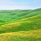 Hilly landscape of Tuscany Royalty Free Stock Images
