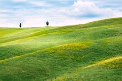 Hilly landscape of Tuscany Stock Image