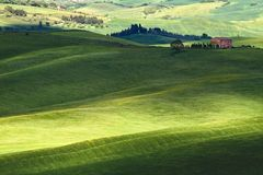 Hilly landscape of Tuscany. Rural countryside landscape in Tuscany region of Italy Royalty Free Stock Photography