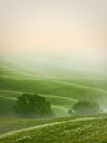 Hilly landscape of Tuscany Stock Photos