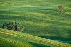 Hilly landscape of Tuscany. Rural countryside landscape in Tuscany region of Italy Royalty Free Stock Photos