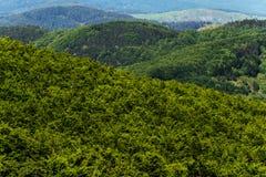Hilly landscape. Tuscany, Italy Stock Photos