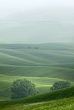 Hilly landscape of Tuscany in the Mist. Rural countryside landscape in Tuscany region of Italy Royalty Free Stock Images