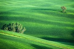 Hilly landscape of Tuscany Royalty Free Stock Photos