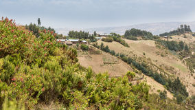 Hilly landscapes of Ethiopia Royalty Free Stock Images