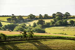 Hilly lush countryside near Looe, Cornwall Royalty Free Stock Photos