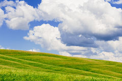 Hilly meadow background Royalty Free Stock Photography