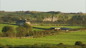 Hilly and rocky landscape with cows. A hilly and rocky landscape shot with a house surrounded by old stone walls and two cows stock footage