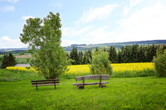 Hilly saarland landscape with rape field. Lookout point with ben. Hilly saarland landscape with blooming rape field. Lookout point with benches Royalty Free Stock Photo