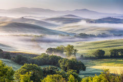 Hilly Tuscany valley at morning. Picturesque Tuscany landscape of lush misty valley at morning royalty free stock image