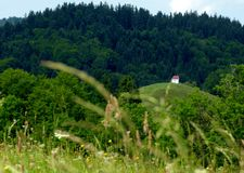 Cute little chapel on a hill with forest in the background. Hilly and wooded area with a small chapel on the summit in southern Germany, small chapel on the hill royalty free stock photo