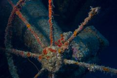Hilma Hooker shipwreck, Bonaire Royalty Free Stock Images